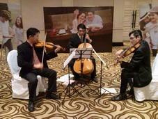 รับเล่นงานแสดงดนตรี String Trio  ในโอกาสต่าง ๆ ( Violin  Viola Cello )