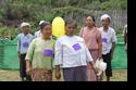 กิจกรรมการส่งเสริมสุขภาพผู้สูงอายุ ตำบลปางมะผ้า 2556