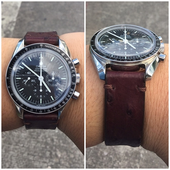 Omega With Strap Ostrich Dark Brown Color.