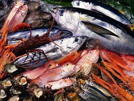 ASEAN Seafood Hub