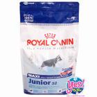 อาหารสุนัข Royal canin maxi  junior 32 ขนาด 4 kg. สำหรับลูกสุนัขพันธุ์ใหญ่ อายุ 5 ถึง 15 เดือน