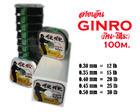 เอ็น GINRO 100 M.