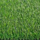 ขาย หญ้าเทียม ปูพื้น สีเขียว (ใบหญ้าเล็ก) ความสูง 3.5 ซม. VICTORY Green-All (3.5V เขียวล้วน) ราคาโปรโมชั่น 440 บาท/ตรม.