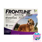 Frontline PLUS สำหรับสุนัขหนัก 20-40 กก. ยาหยดกำจัดเห็บหมัด  อายุ 8 สัปดาห์ขึ้นไป 1 กล่อง บรรจุ 3 หลอด