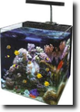 มีบริการจัดอุปกรณ์สำหรับเลี้ยงปลาทะเล ราคากันเองครับ