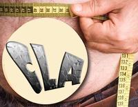 CLA มันลดความอ้วนไขมันได้อย่างไร ?