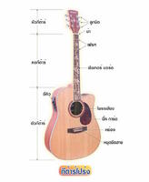 4 แนวคิดเลือก กีต้าร์โปร่ง (Acoustic Guitar)