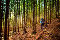 เที่ยวป่าหน้าหนาว ระวังป่วย 2 โรคอันตราย รักษาไม่ทันอาจถึงชีวิต