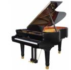 เปียโน Perzina Grand Piano รุ่น GBT152 คุณภาพสูง จากอเมริกา ราคาพิเศษ