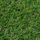 ขาย หญ้าเทียม (ใบหญ้าหนา) ความสูง 2 ซม. DG-2-ATRIUM Green-Yellow (2A มีหญ้าแห้ง) ราคาโปรโมชั่น 290 บาท/ตรม.
