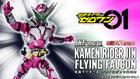 S.H.Figuarts Kamen Rider Jin Flying Falcon : P-Bandai