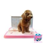 ห้องน้ำสุนัข  ห้องน้ำหมา สีชมพู รุ่นตั้งฉาก size S ขนาด  กว้าง 14 นิ้ว ยาว 19 นิ้ว สูง 1.5 นิ้ว ฉาก กว้าง 9.5 นิ้ว ยาว17 นิ้ว