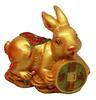 กระต่ายทองมุกนอนถือเหรียญ