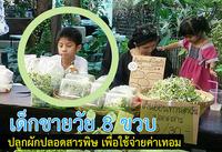 เด็กชายวัย 8 ขวบ  ปลูกผักปลอดสารพิษ เพื่อใช้จ่ายค่าเทอม