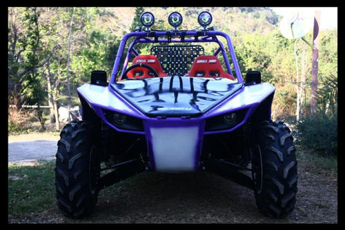 buggy project 27
