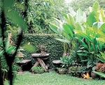 หลักการและแนวคิดในการจัดสวน