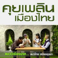 คุยเพลินเมืองไทย แมววิเชียรมาศ