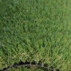 ขาย หญ้าเทียม ปูพื้น W-SHAPE สีเขียว เหยียบแล้วหญ้าไม่ล้ม ความสูง 3 ซม. คุณภาพสูง ทนแดด-ฝน (DG-3-WINNER) ราคา 580 บาท/ตรม.