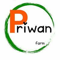 ฟาร์มเมล่อนญี่ปุ่นคิโมจิ @ Piwan Melon farm สงขลา