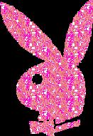  Playboy   blog  hi5  myspace