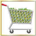 วิธีสั่งซื้อและชำระเงิน (How to order and Payment)