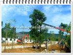 จัดส่งไม้พร้อมปลูก (หมู่บ้าน นาวีเฮ้าส์ 22 ต.บางเสร่ อ.สัตหีบ จ.ชลบุรี)
