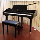 Senteinway Digital Piano เปียโน ไฟฟ้า 88 คีย์ รุ่น ODP-80