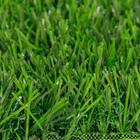 ขาย หญ้าเทียม ปูพื้น C-SHAPE สีเขียวล้วน เหยียบแล้วหญ้าไม่ล้ม ความสูง 3 ซม. คุณภาพสูง ทนแดด-ฝน (DG-3-COLOGN) ราคา 420 บาท/ตรม.
