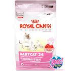 Royal canin babycat 34/ 2 kg. สำหรับลูกแมวหย่านม-4 เดือน ย่อยง่าย เคี้ยวง่าย เม็ดเล็กพิเศษ