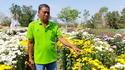 แปลงดอกไม้บ้านห้วยสำราญ  แหล่งท่องเที่ยวเชิงเกษตรของอุดรฯ