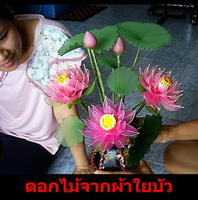 DIY ดอกไม้ผ้าใยบัว
