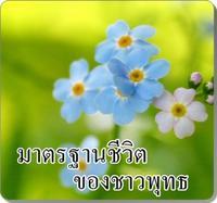 มาตรฐานชีวิตของชาวพุทธ