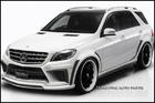 W166 ML WALD Body Kit