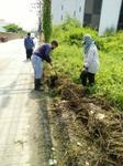 ดำเนินการตัดหญ้า ตัดแต่งไม้พุ่ม ไม้ประดับ