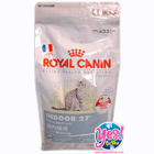 อาหารแมว ROYAL CANIN INDOOR 27 ขนาด 2 Kg สูตรแมวโตเลี้ยงในบ้าน ลดกลิ่นมูล ลดก้อนขนในท้อง ช่วยให้แข็งแรง อ่อนกว่าวัย