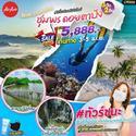 ชุมพร ดอยตาปัง  3 วัน 2 คืน เดินทาง 3-5 เมษายน 64  เพียง 5,888 บาท