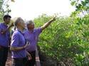 ด้วยพระบารมี ดร.สนใจ หะวานนท์ ค้นพบโกงกางพันธุ์ใหม่ในป่าชายเลนทูลกระหม่อม