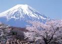 โตเกียว - ปักกิ่ง 6 วัน 4 คืน สุดคุ้ม...ไปครั้งเดียวเที่ยว 2 ประเทศ  เดินทาง   11 - 16  กันยายน  57   ท่านละ  37,900   บาท