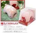 เครื่องสลายกล้ามเนื้อน่อง BUTAMAKURA ใช้กับกล้ามเนื้อต้นแขนก็ได้ ผ่อนคลายกล้ามเนื้อที่เมื่อยล้าได้ ต้นคอ หลัง บ่า สุดเริ่สสสนุ่มนิ่ม น่ารัก สีชมพู