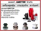 มอเตอร์ Ametek : มอเตอร์เครื่องดูดฝุ่น งานคาร์แคร์