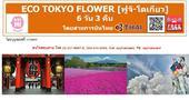 Eco Tokyo Flower (Fuji-Tokyo) 6D3N เพียง 42,900 บาท (TG)