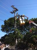 กองช่างเข้าดำเนินการซ่อมแซมไฟกิ่งสาธารณะ บ้านห้วยจะค่าน หมู่ที่ 9