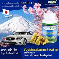Pureplus Ambassador