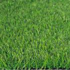 ขาย หญ้าเทียม ปูพื้น สีเขียว (ใบหญ้าเล็ก) ความสูง 3 ซม. VICTORY Green-All (3V เขียวล้วน) ราคาโปรโมชั่น 390 บาท/ตรม.