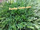 หญ้าเทียมฟุตบอล  50 mm