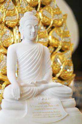 http://v1.igetweb.com/www/triluk/catalog/e_1559699.jpg