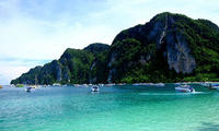 ล่องเรือชมฝูงปลาโลมา&นั่งเรือเที่ยวเกาะพีพี