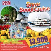 Snow Seoul Cruise Special 5 วัน 3 คืน