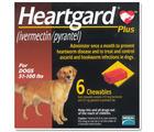 Heartgard Plus ป้องกันโรคพยาธิหัวใจ สําหรับสุนัขน้ำหนักไม่เกิน 51-100 ปอนด์ ( 23-45 กก.)