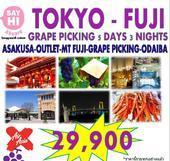 Tokyo-Fuji Grape picking 5D3N เพียง 29,900 บาทเท่านั้น!!